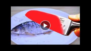 4 Simple & Fun Life Hacks for FISH You Should Know